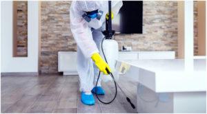 stati - Исследования показывают, что видимая очистка является ключом к доверию клиентов